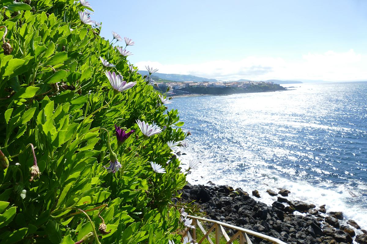 Azoren  -  Die schöne Grüne im Atlantik