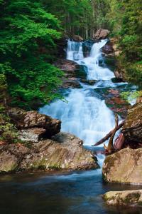 Bayerischer Wald: Wandern im Nationalpark