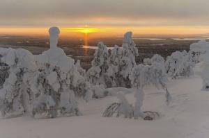 Finnland - Nordlichter, Rentiere und Baumtrolle mit Hermann J. Netz