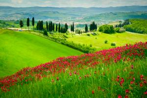 Florenz & Toskana: Impressionen