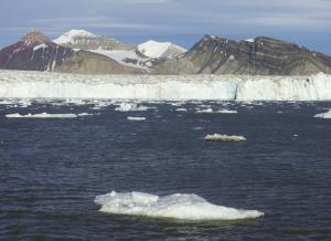 MS ORTELIUS: Nord-Spitzbergen Eisbären und Packeis