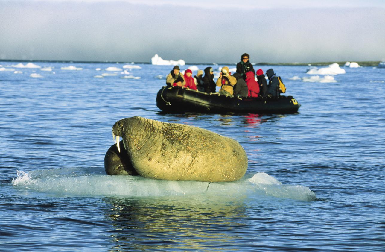 MS PLANCIUS: EXKLUSIV: Spitzbergen-Umrundung