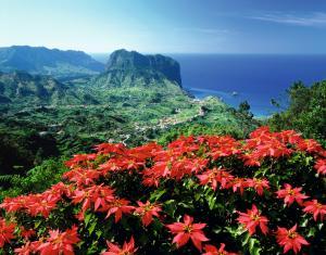 Madeira: Impressionen