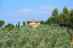 Mit dem E-Bike die Toskana und Elba erleben