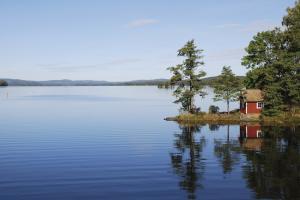 Natur pur in Mittelschweden
