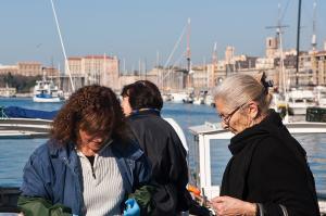 Provence und Camargue mit dem E-Bike entdecken!