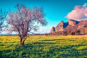 Sizilien: Impressionen zur Mandelblüte
