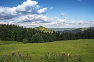 Thüringer Wald: Wandern