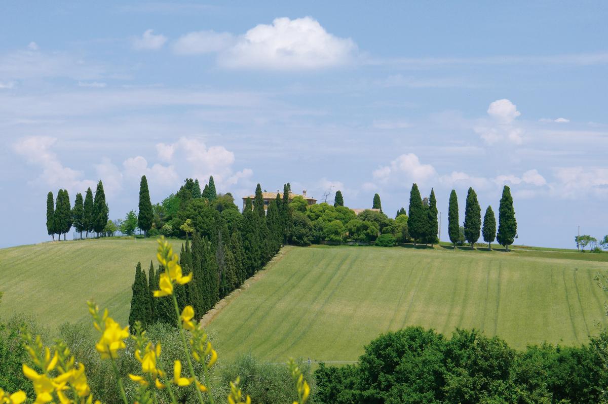 Zauber der Toskana